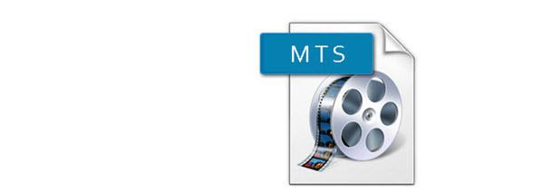 mts-format.jpg