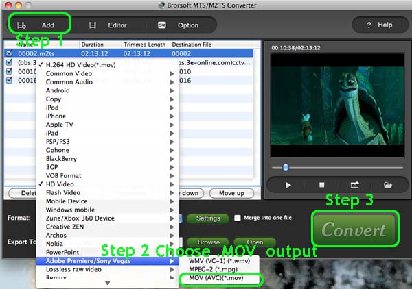Convert Sony HDR Camcorders AVCHD/MTS Files to MOV for FCP