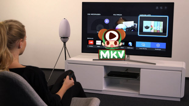 How to Play MKV on Blu-ray Player via USB or DLNA Easily
